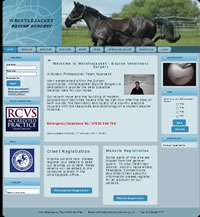 Whistlejacket Equine Surgery Website